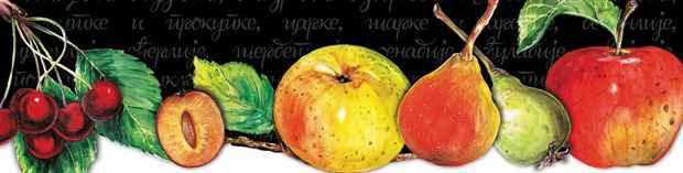 Staro voće