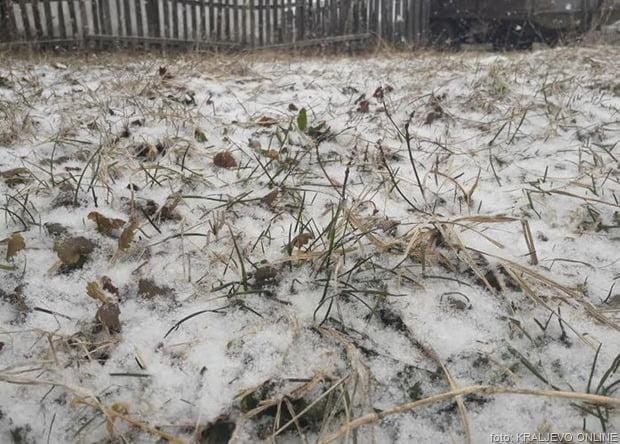 Sneg u travi feb 2019